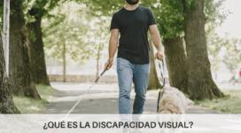 Cuándo se considera discapacidad visual